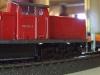 DSCF5584